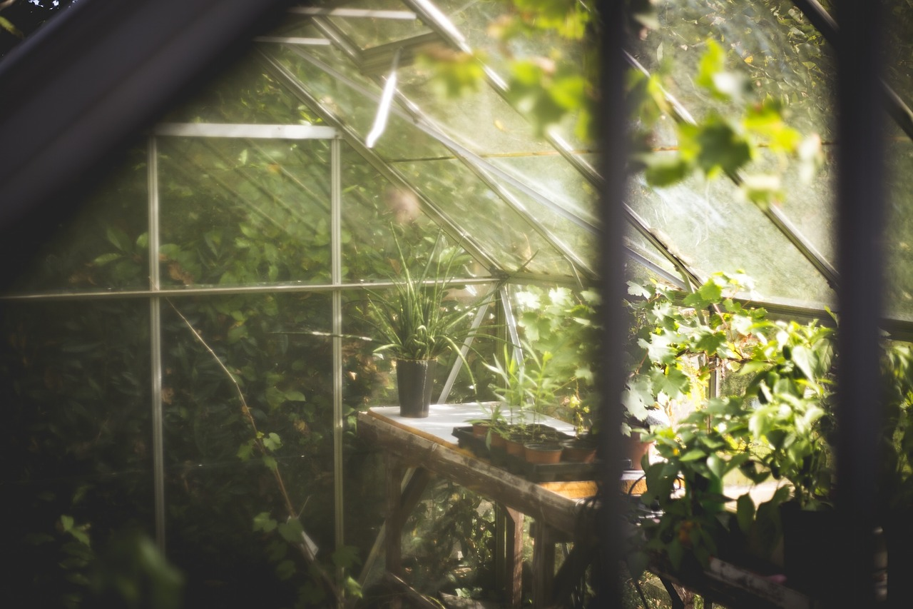 How To Know If Aquaponic Is The Right Gardening Way For You?
